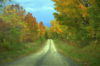 A country lane in fall, Seneca Lake area in the Finger Lakes