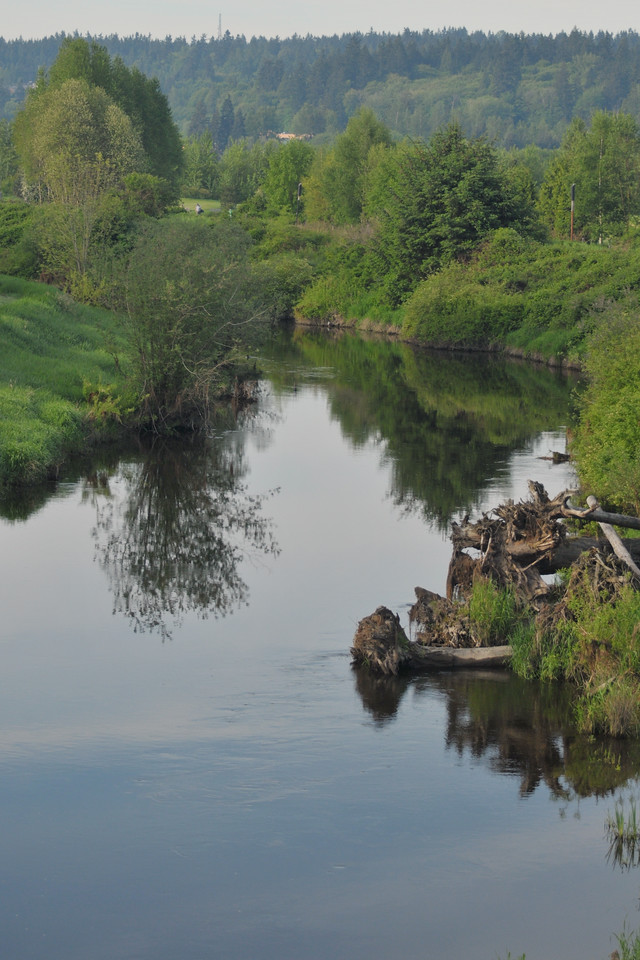 A Spring morning on the river near Redmond.