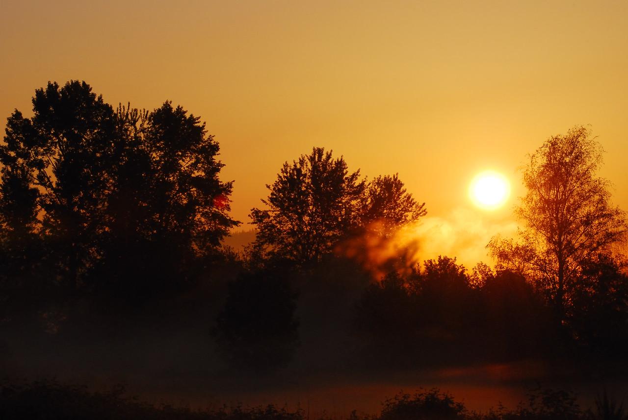 A foggy Spring dawn on the Sammamish River near Marymoor Park.