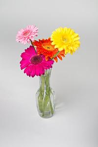Lindsies Flowers-0042