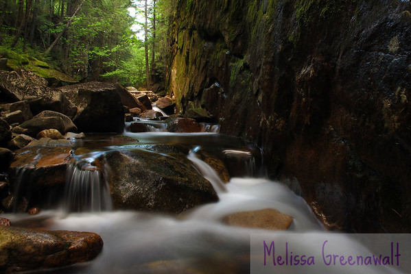 Smarts Brook: where rock meets water meets forest.