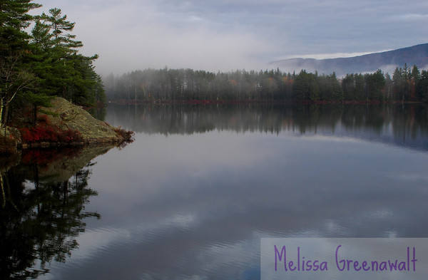 I fell into a burnin' ring of fire: wild blueberries usher in fall at Perch Pond, Campton, NH.