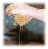 Water being squeezed from a sponge; the detail in this image is best viewed in a larger size.