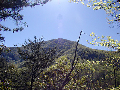 View from Little Greenbrier Trail toward the Smokies GSMNP May 8-2007
