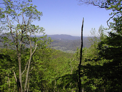 View into Wears Valley from Little Greenbrier Trail May 8 2007 GSMNP