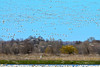 Llano Seco 2:27:1118