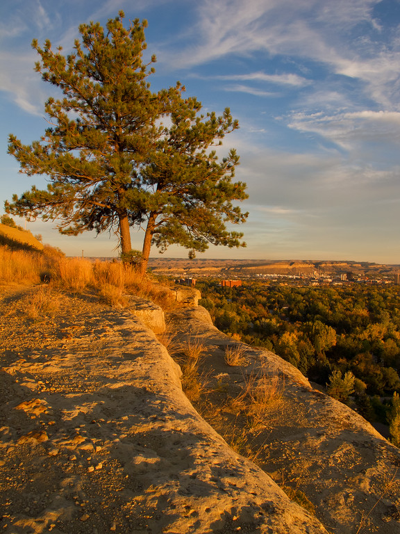 Billings From the Rims