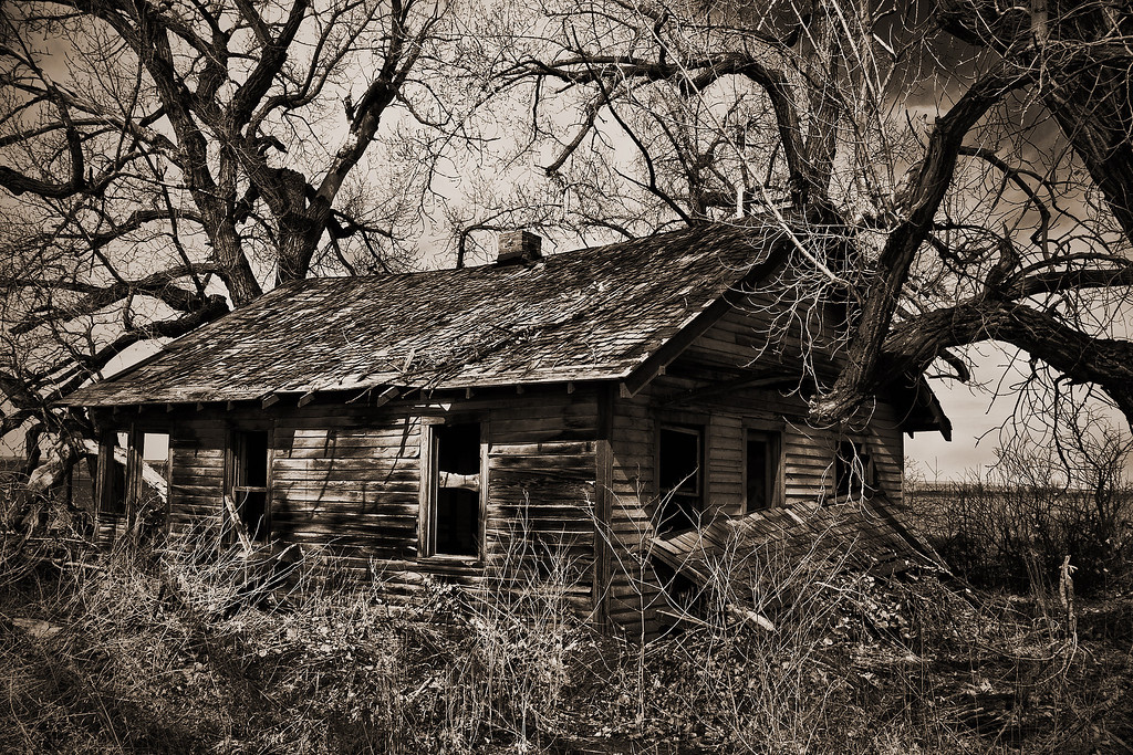 Abandoned Shack, B&W Version