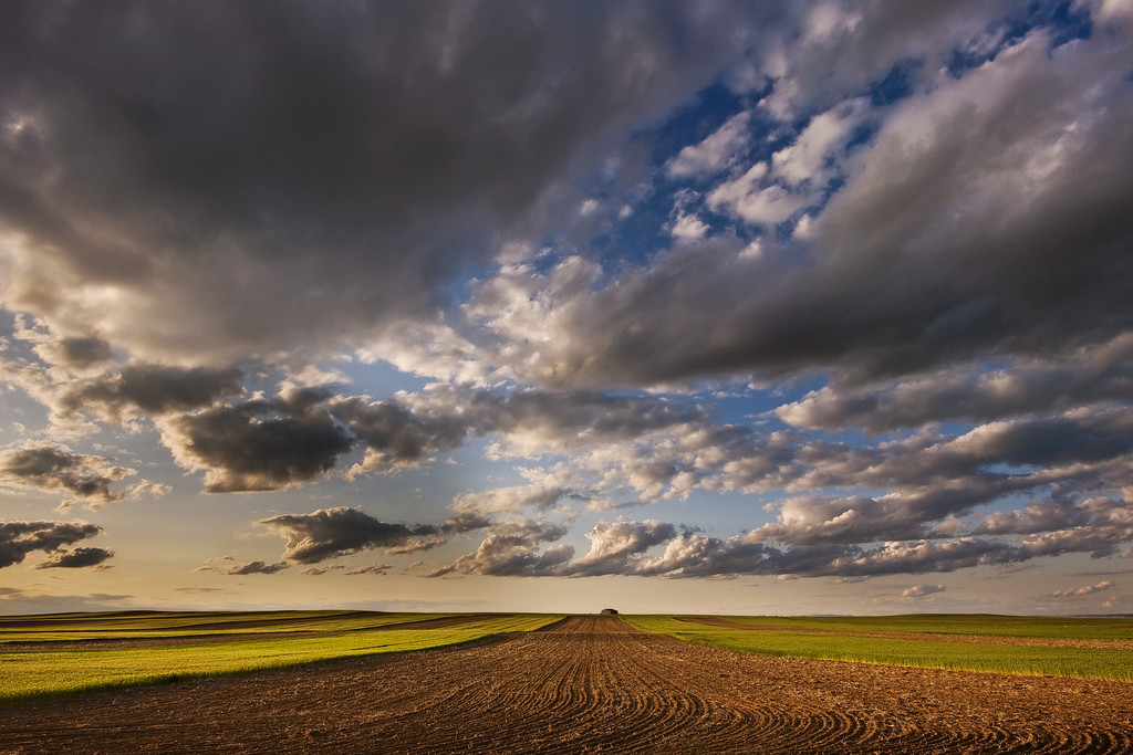 Farmland Under The Big Sky<br /> Billings, Montana, off Hwy 3