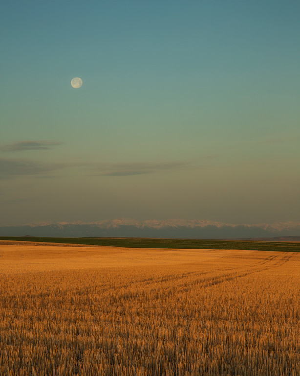 South-central Montana Farmland