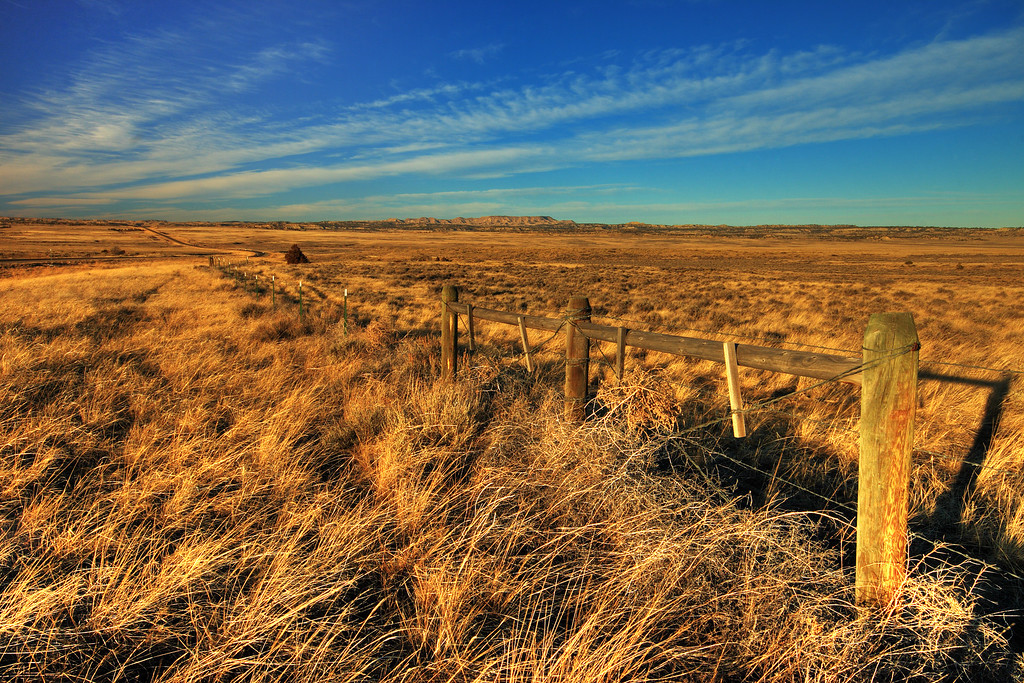 Wide Open Space<br /> Eastern Montana, south of Roundup