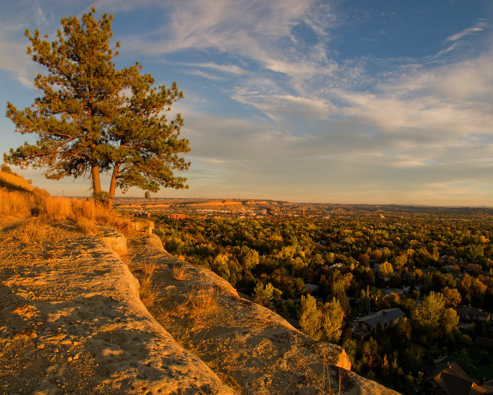 From the Rimrocks of Billings