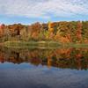Fall at Seneca Ponds