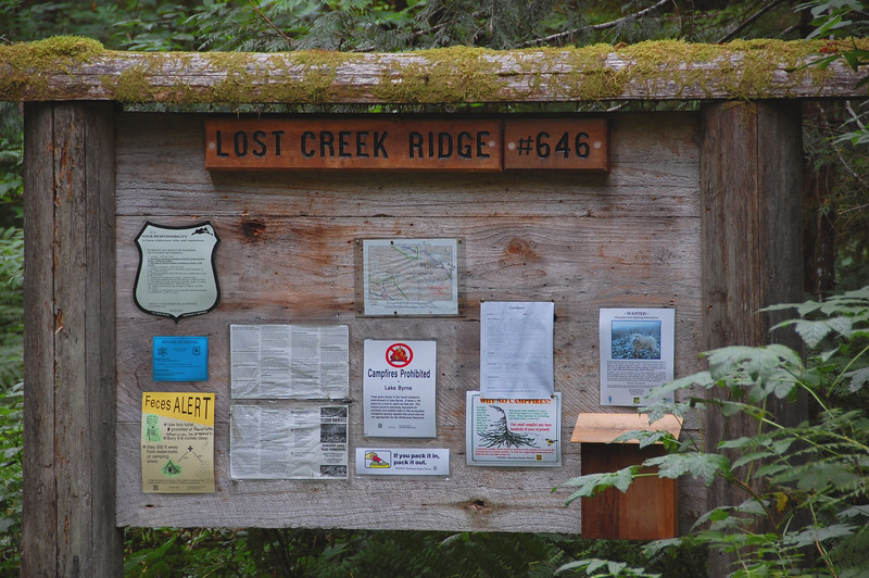 We hiked the Lost Creek Rdge trail in the Glacier Peak Wilderness Area.  This is east of Darrington off the Mountain Loop Highway in the North Cascades.  We hiked for four days.  After the first hour we saw no other people!!  The trail was very rugged and gained perhaps 8,000 feet over the four days.