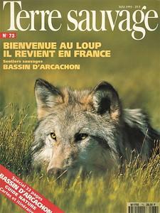 Bienvenue au loup !