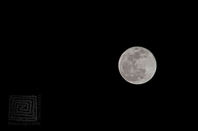 HHP_BlueMoon_2985