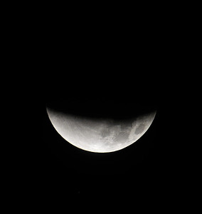 Lunar Eclipse-Sea Ranch-20111210