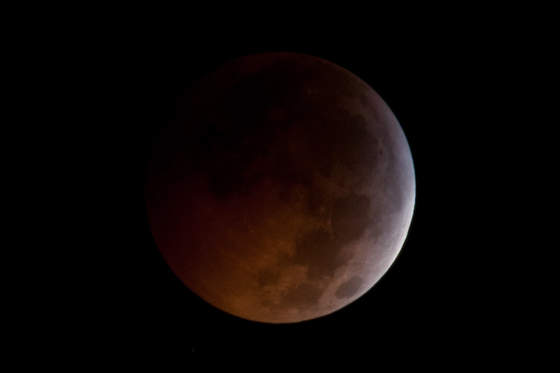 [Filename: lunar eclipse xsi-133.jpg] <br />  Copyright 2010 - Michael Blitch Photography
