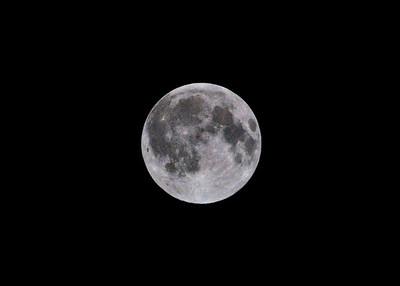Full Moon6