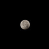 [Filename: lunar eclipse 400-29.jpg] <br />  Copyright 2010 - Michael Blitch Photography