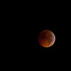 [Filename: lunar eclipse xsi-154.jpg] <br />  Copyright 2010 - Michael Blitch Photography