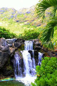 WATERFALL, SEA LIFE PARK, OAHU