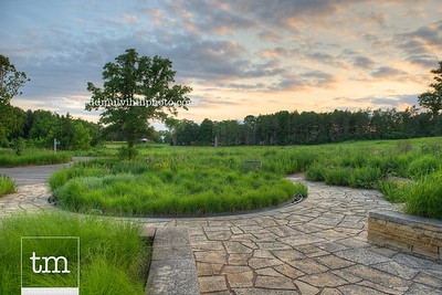 All is still in the Prairie Garden as the sun sets behind the tree line.