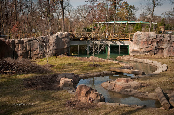Grizzly Bear Exhibit