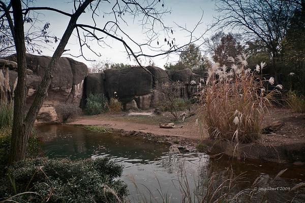 Cheetah compound.
