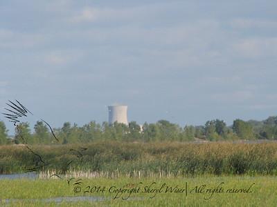 MaGee Marsh Oct 2011