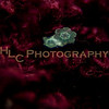 HLC_4255