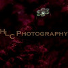 HLC_4284