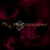 HLC_6711