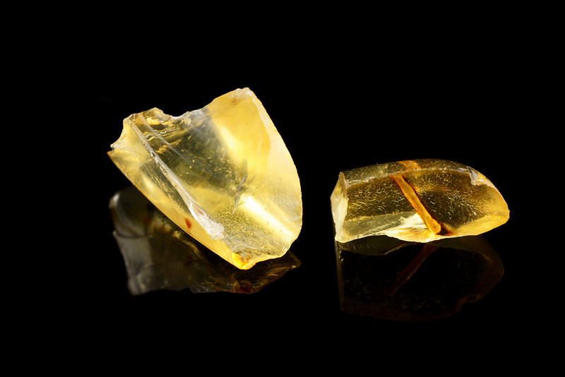 Raw Amber pieces with inclusions