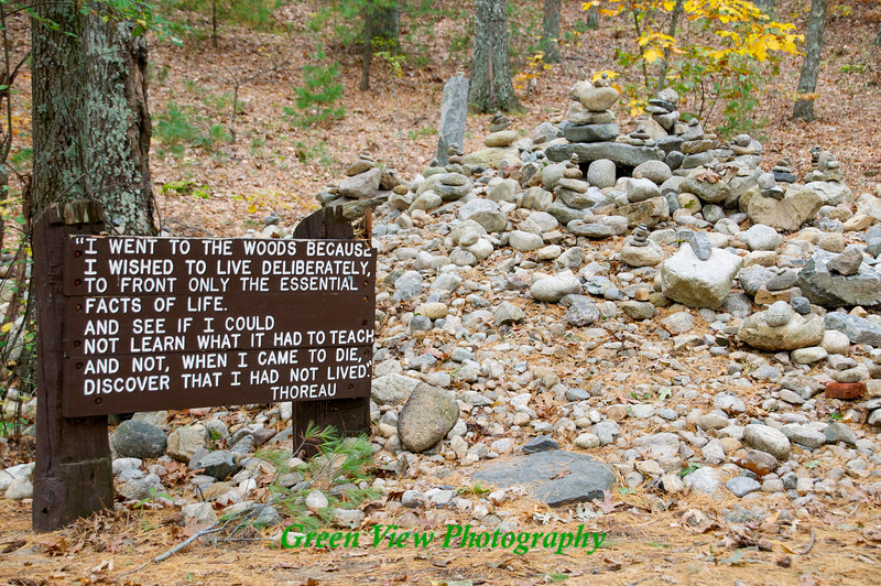 Walden Ponds quote by Thoreau