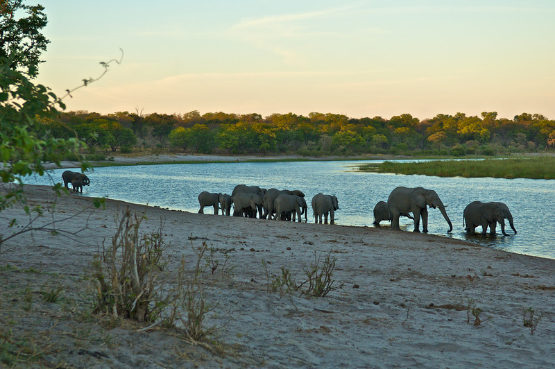 Evening on the Chobe River, Botswana