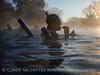 Crystal River, FL - 3 Sisters Springs (7)