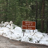 The road to Mariposa Grove was closed, so we hiked 2 miles each way to check it out.  If you want to see the same thing but be lazy, wait until the summer.  But you are also going to see swarms of people.