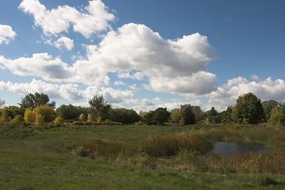 Cloudscape, Marie Curtis Park