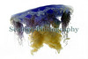 The blue jellyfish, Cyanea lamarckii, washed up in Belle Greve Bay on Guernsey's east coast  on 11 May 2010