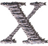 """sea bass"" bass metallic X ""letter X"" montage Dicentrarchus labrax silver"