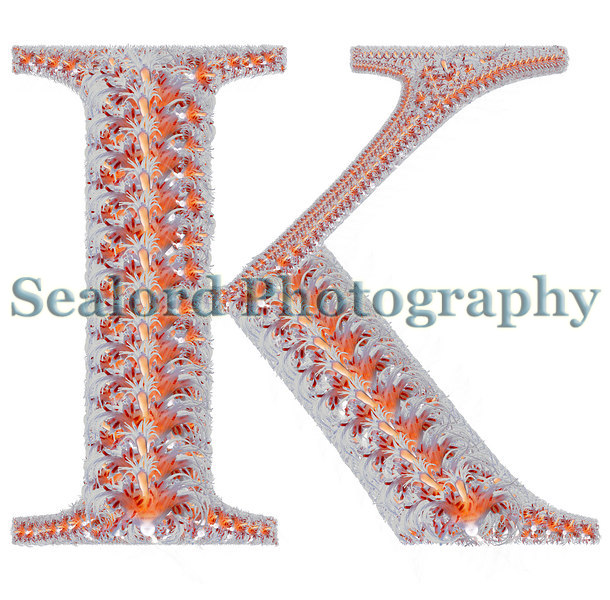 A montage of the hydroid Ectopleura larynx in the shape of the letter K.<br /> ©RLLord<br /> fishinfo@guernsey.net