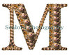 A montage of monach cowries making up the shape of the letter M.<br /> ©RLLord<br /> fishinfo@guernsey.net