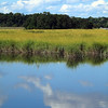 Marshlands Conservancy