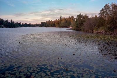 Martha Lake - Lynnwood