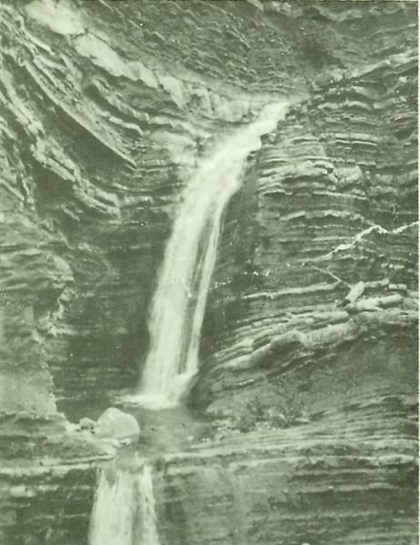 Matilija double falls 1917