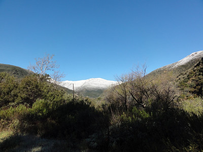 Oldman Mountain covered with snow.