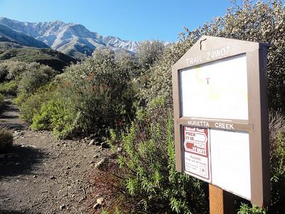 The Trail to Murietta Camp. The divide mountains covered with snow.