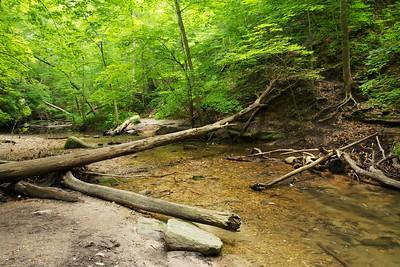 Deadfall across the creek. Upper Dells, Matthiessen State Park, Illinois.
