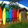 02-28 Pa'ia @ Maui, Hawaii